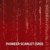 Pioneer Scarlett (SRD)